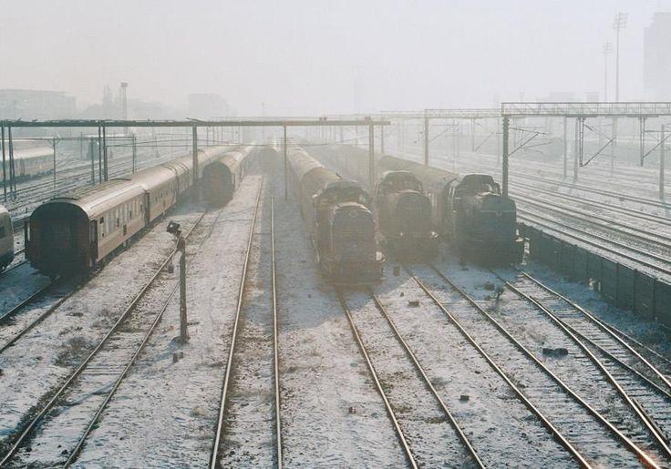 winter, older  copyright: Ina Ionescu