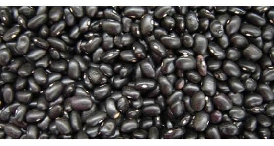 Você sabe o que são leguminosas Para que serve O quanto devemos comer por dia As leguminosas são os grãos produzidos em vagens feijões lentilha grão-de-bico soja ervilha fava e amendoim Confira aqui por que esses alimentos devem fazer parte da sua al - Veja mais em: http://www.maisequilibrio.com.br/nutricao/voce-sabe-o-que-e-uma-leguminosa-2-1-1-62.html?pinterest-mat