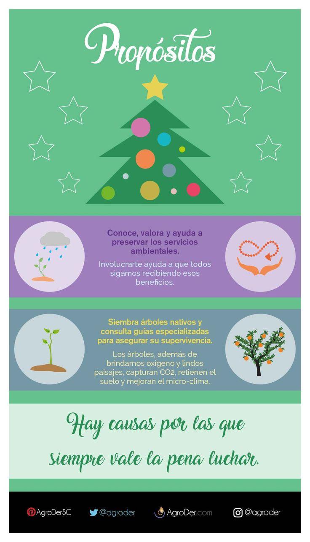 #Propósitos #Ecosistemas