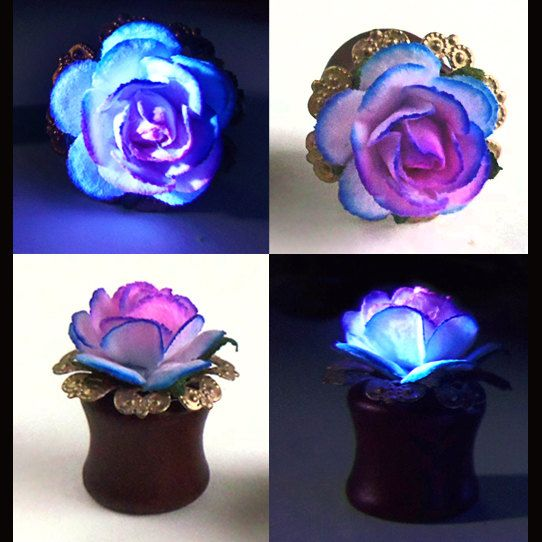 1/2 inch Ombre Rose Plugs Organic Wood 12 mm by esanany on Etsy, $20.50