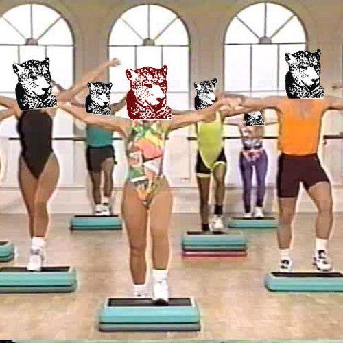 TIGER & WOODS, Winter Fitness Mix, 2013