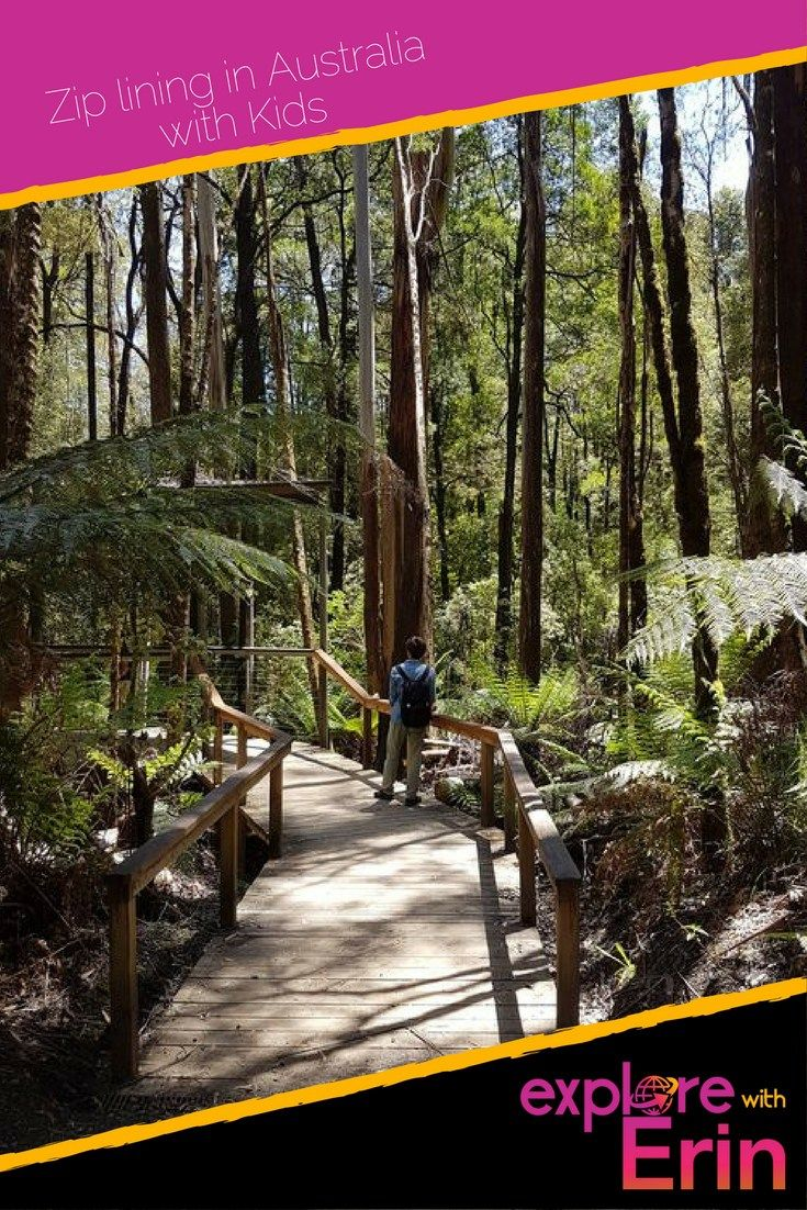 Otway Fly Treetop Adventures - the highest treetop walk in the world. Take the kids this school holidays. Victoria, Australia