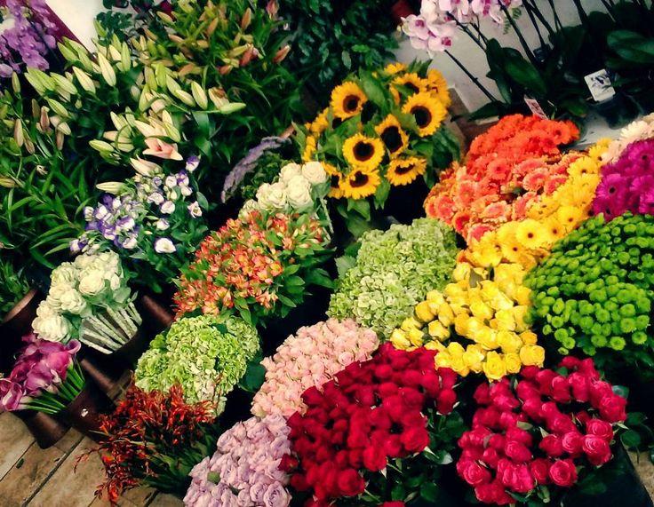 "52 aprecieri, 1 comentarii - Floraria Dorothy's (@florariadorothys) pe Instagram: ""Colors.. #autumn #mood #in #our #flowershop #cluj #clujlife #clujcenter #floricluj #lifeincluj…"""