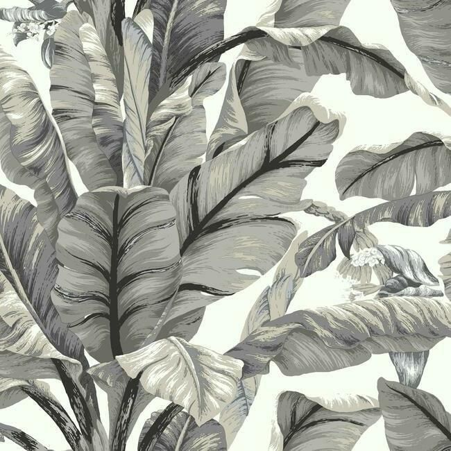 Banana Leaf Peel Stick Wallpaper In White And Black By York Wallcove Peel And Stick Wallpaper Botanical Wallpaper Leaf Wallpaper