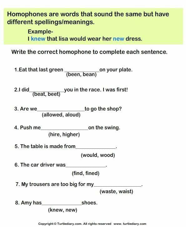 Pin By Ambrina Sabir On English Worksheets For Grade 4 Homophones Worksheets Homophones Phonics Worksheets English grammar worksheets for grade 4