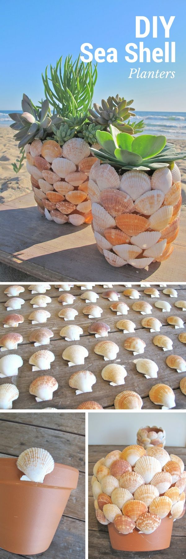 Check out the tutorial on how to make DIY sea shell planters (great for summer decor) @istandarddesign