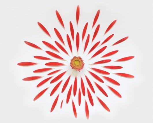 """ECO ART: """"EXPLODED FLOWERS"""" DI FONG QI WEI"""