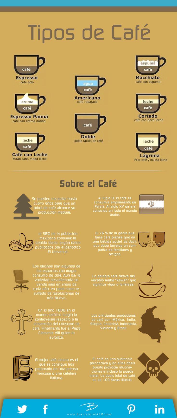 Tipos de Café.  #CaféconHistoria