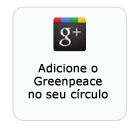 Ciberativista | Brasil