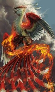Vermillion Bird of the south