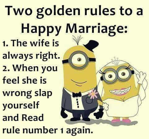 2 golden rules to a hair marriage #minions