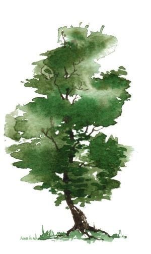 watercolor trees - Google Search by debbie.rose.37