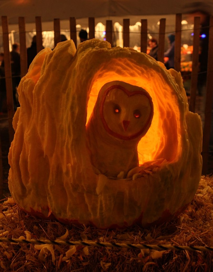 Barn Owl Pumpkin Carving