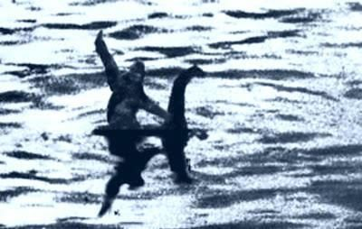They're just messing with us now: Bigfoot Sasquatch, Big Foot, Bigfoot Illustrations, Bigfoot Riding, Loch Ness Monsters, Funny Stuff, Humor, Riding Nessi, Funny Bigfoot