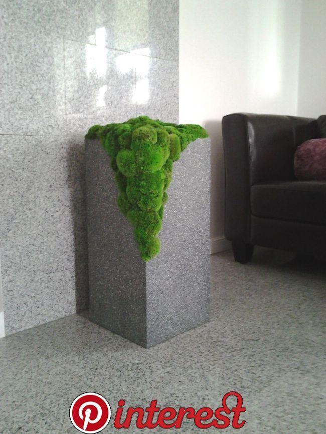 Perfekte Dekoration für das Badezimmer, stabilisiertes Moos ...