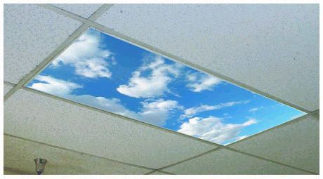 """Fluffy Clouds"" overhead light cover  Turn fluorescent lights into skylights.   I've seen these in person and they really open up a room and make it feel lighter and more welcoming."