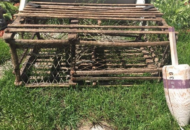 Best 25+ Lobster Trap ideas on Pinterest : Driftwood for sale, Coastal inspired spice racks and ...