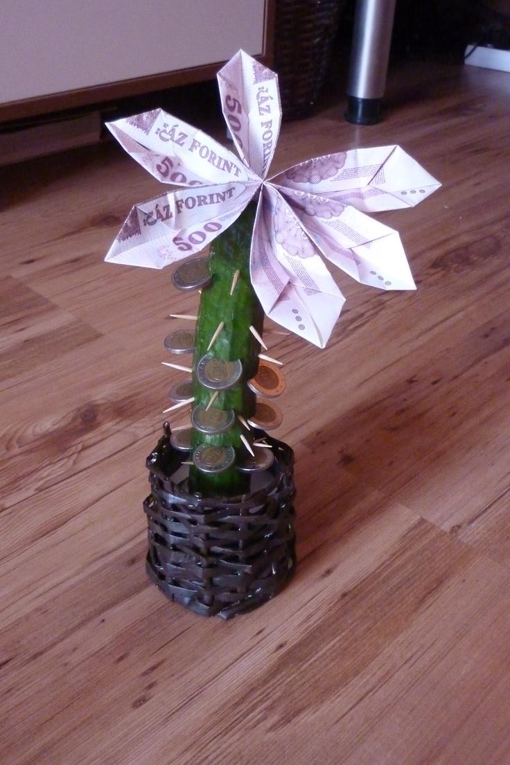 money cactus