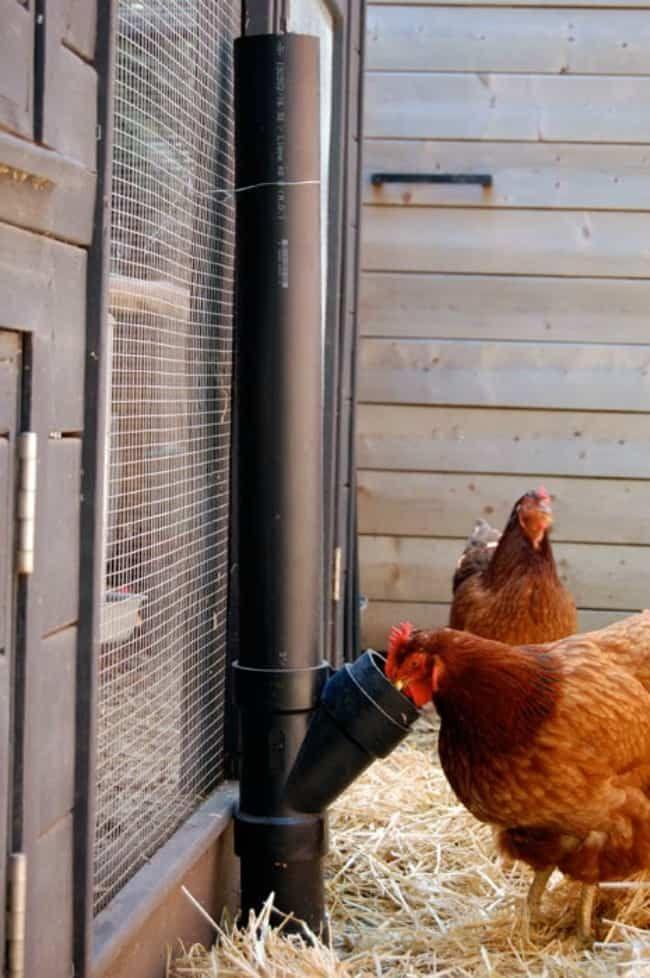 The 11 Best Diy Chicken Coop Ideas The Eleven Best Chicken Waterer Diy Chicken Diy Diy Chicken Coop