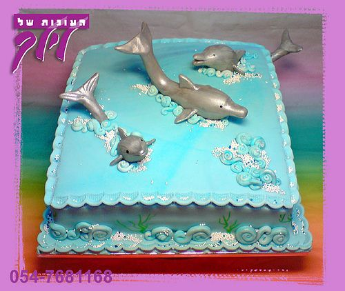 dolphin cake by lilach shifman cakes, via Flickr