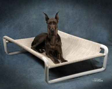 x large pvc dog bed