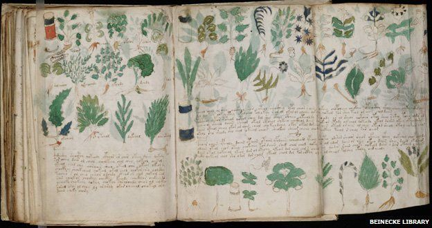 The 15th Century Voynich manuscript has been described as the world's most mysterious book, which could be a complex code, an unknown language or simply a hoax