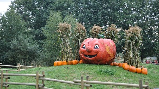 Another locale on our must-do fall list is the Richmond Country Farms pumpkin patch.