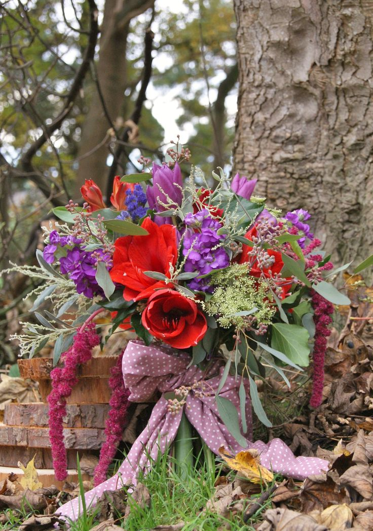 Woodland wedding photoshoot with hand-tied bridal bouquet of red amaryllis, red roses, purple stock, purple statice, purple tulips, white ammi, red alstroemeria, mimosa, seeded eucalyptus, and trailing red amaranthus. Finished off with a polka-dot ribbon. | Florissimo - Flowers for weddings, events and businesses in Shropshire and beyond