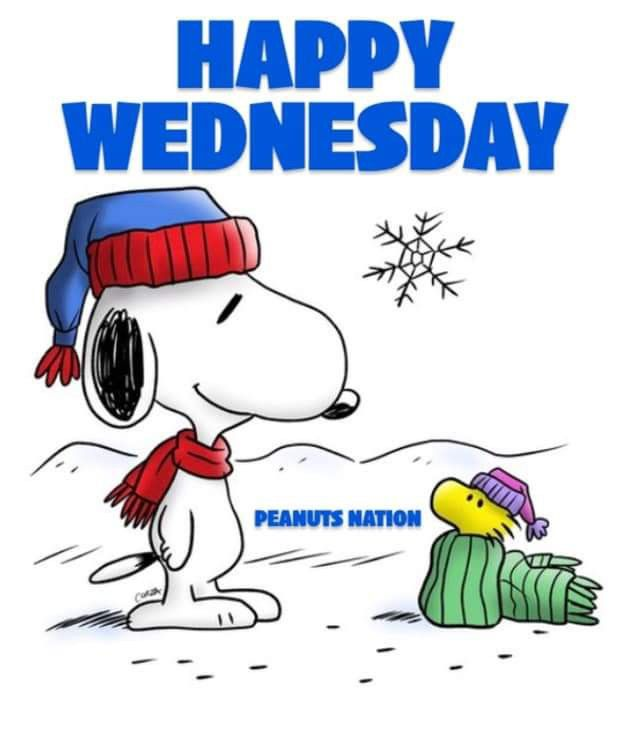 Happy Wednesday Funny Cartoon Quotes Funny Good Morning Quotes Funny Cartoons