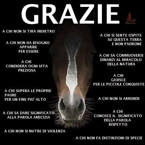 #gracias #thankyou #grazie #mercī #wd57 #walsat