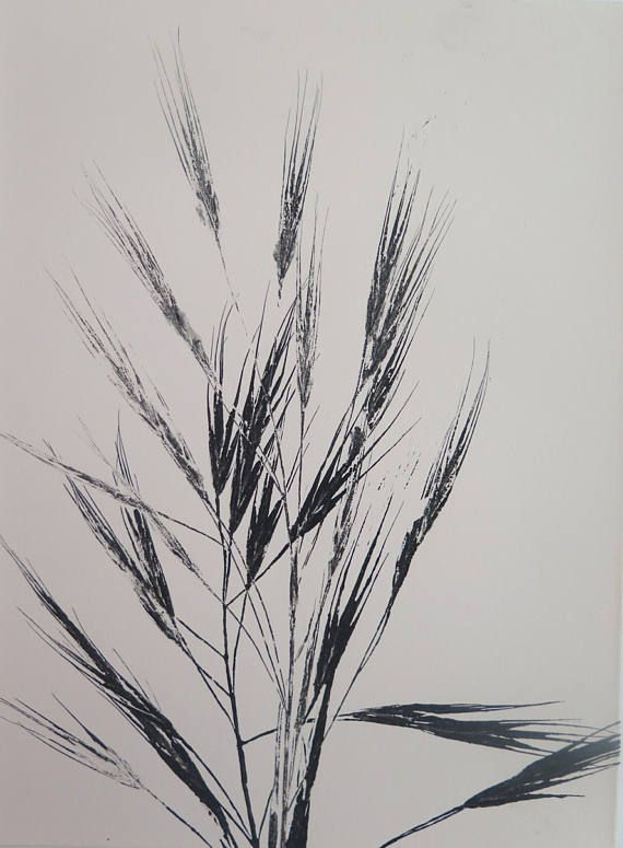 Small original  ooak nature monoprint modern organic and minimal on cream paper by Stef Mitchell Summer oats grasses