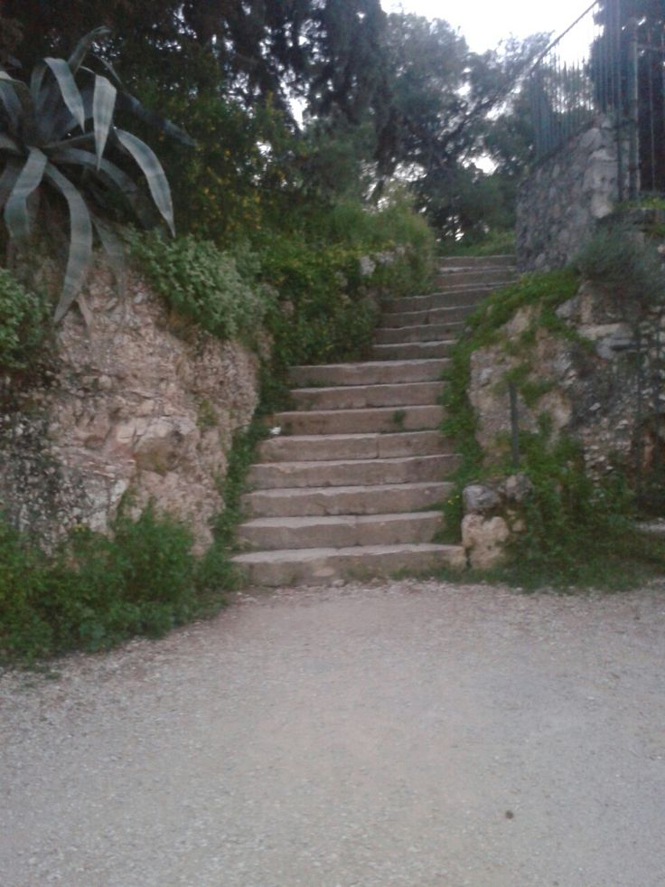 Path leading to Pnyx hill, the place where ancient Athenians used to gather and hold public speeches.
