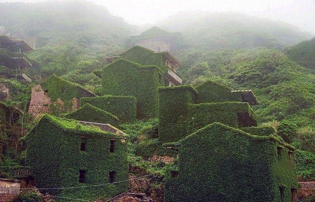 Gizli yeşil vadi