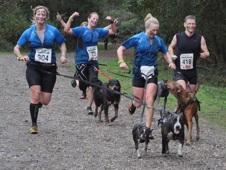 I wanted to do a write-up for anyone considering taking up canicross with their dog(s). If you've been to any of the Brutal, Human Race, CTS or other canicross friendly off-road events you may have…