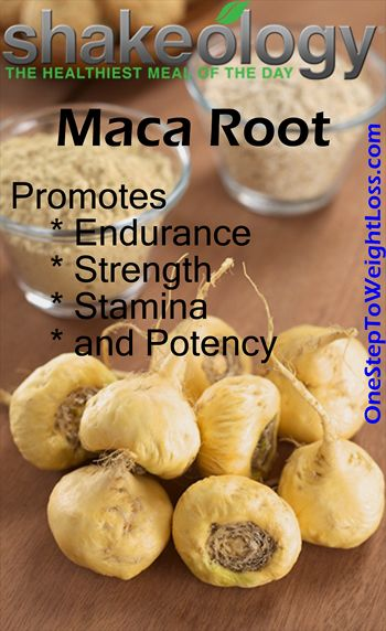 Maca Root is widely known to promote endurance, strength, stamina, and potency. Check out these other Shakeology Nutritional Facts: http://www.tipstoloseweightblog.com/shakeology/shakeology-nutrition-facts #ShakeologySuperfoods  Want more business from social media? zackswimsmm.tk