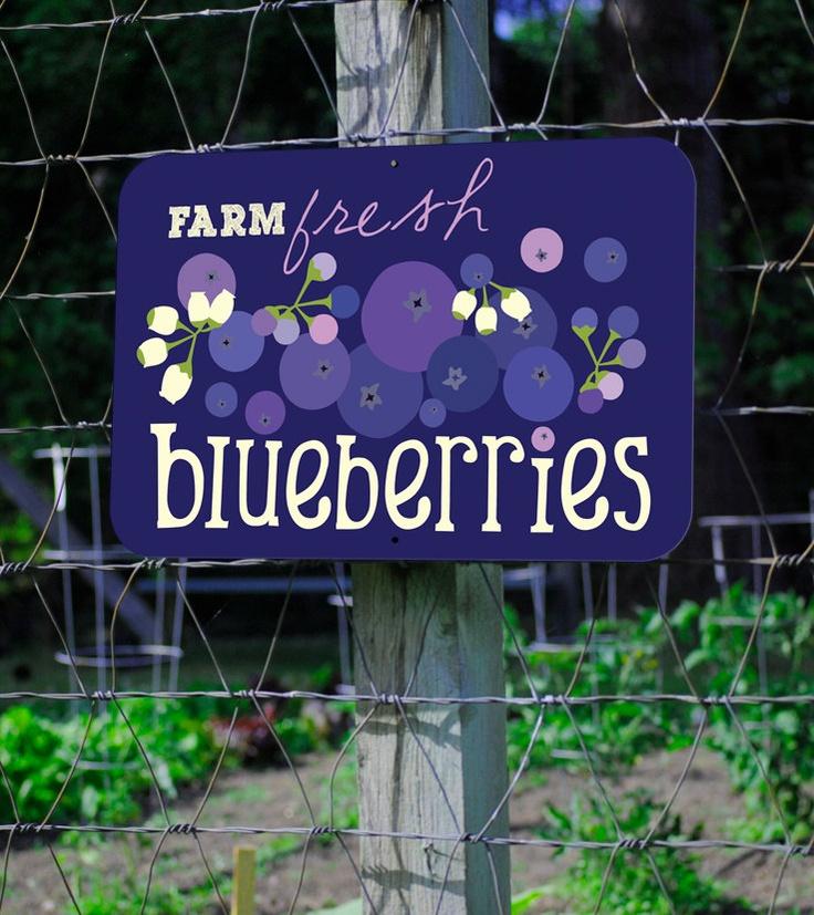 "Farm Fresh Blueberries Farm Sign 18X12"" via Etsy."