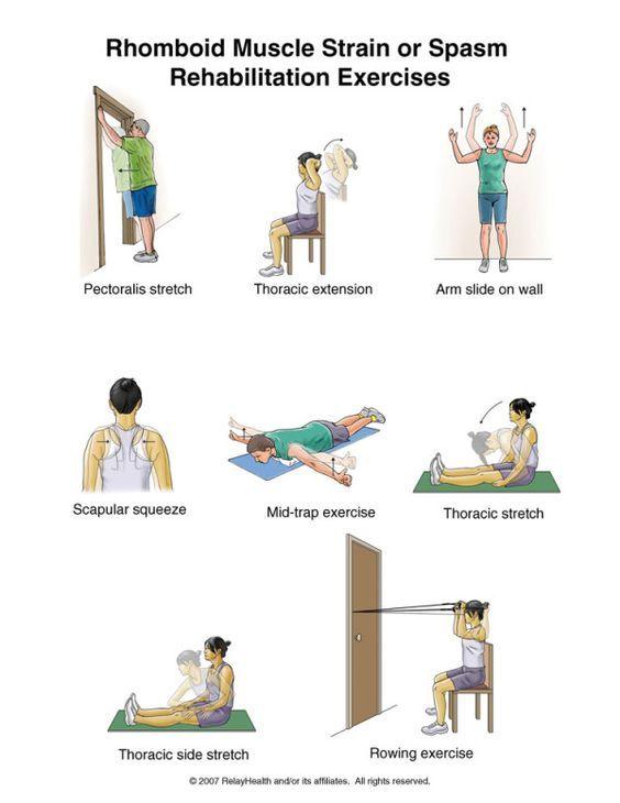 Mid Back Pain Rehabilitation Exercises | Car Accident Doctor Atlanta