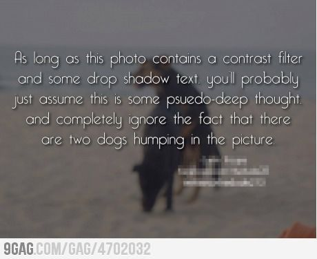 : Texts, Laughing, Contrast Filters, Funny Pictures, Deep Thoughts, Dogs Photos, Funny Stuff, Things, Inspiration Quotes