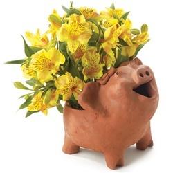 Terra Cotta Happy Pig Planter