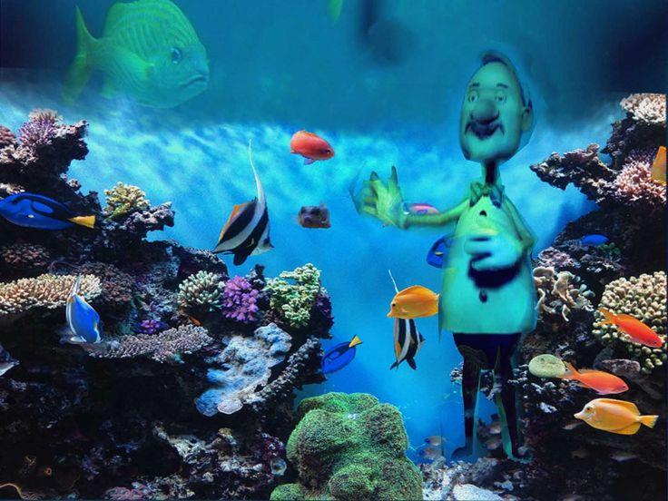 Ο Κόσμος Των Ζώων - Ψάρια και Ζώα της Θάλασσας