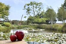 Ceramic cherries by the lake