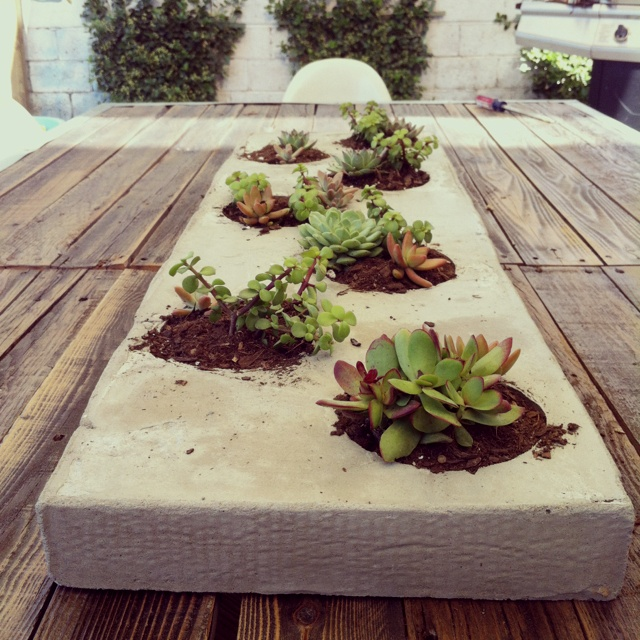 My husband made this planter from a 3 dollar back of cement! And with succulents planted inside... It makes for a great centerpiece to our DIY patio table made out of an old weathered fence!