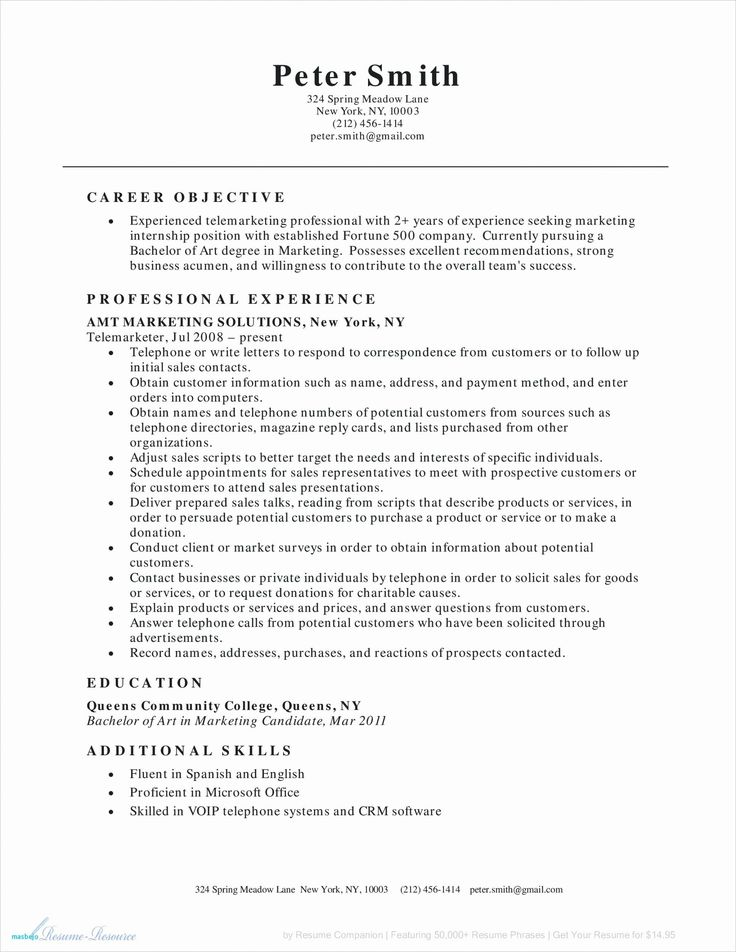 16++ Resume objective for sales position Resume Examples