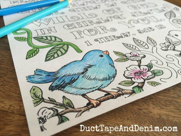 1 Thessalonians 5:16-18 close up of blue bird on FREE Bible verse coloring page. More on DuctTapeAndDenim.com                                                                                                                                                                                 More