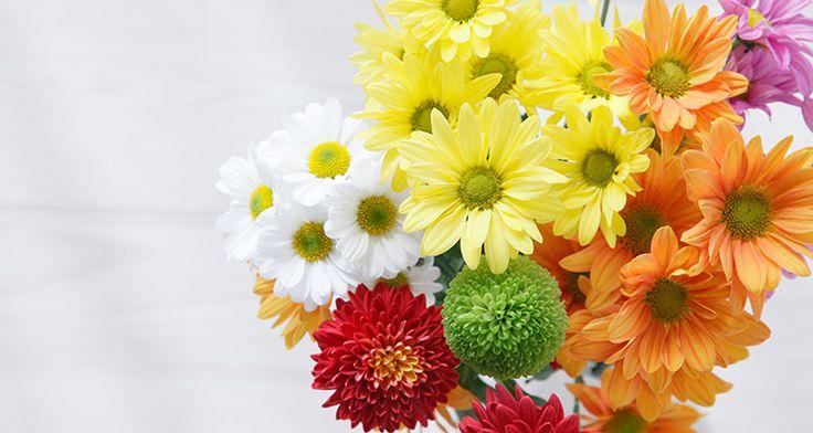Een bos bloemen 2