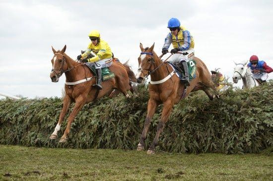 Racing Tips : Triolo out to maintain perfect Aintree record in G...