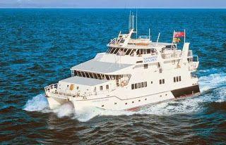 Sightseeing Tours Australia: Great Barrier Reef Liveaboard - Kangaroo Explorer ...