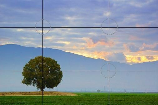This is a basic photography technique called Rule-Of-Thirds. #photography #techniques