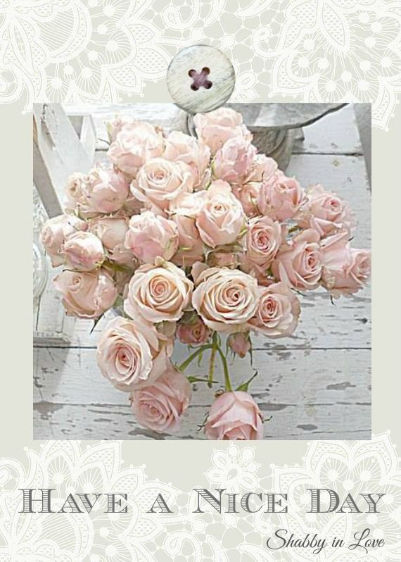 40 best images about Roses on Pinterest | Te amo