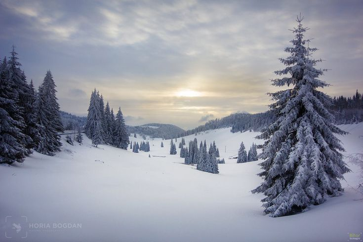 Iarna spre Glăvoi   Bihor in imagini
